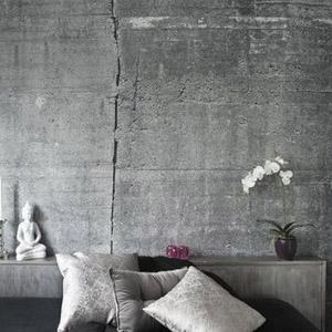 Штукатурки с эффектом текстуры бетона