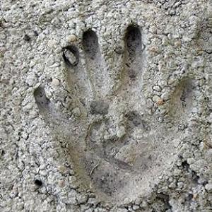 Пропорции для цементной смеси своими руками