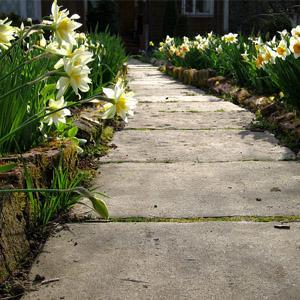 Самостоятельное устройство дачных и садовых бетонных дорожек