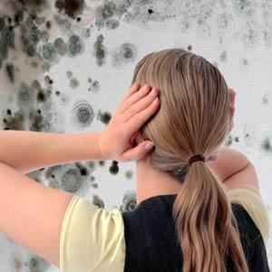 Как избавиться от неприятного запаха в подвале