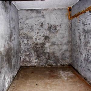 Методы избавления от сырости в подвальных помещениях