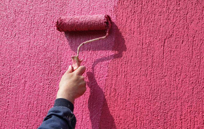 как покрасить стену с короедом